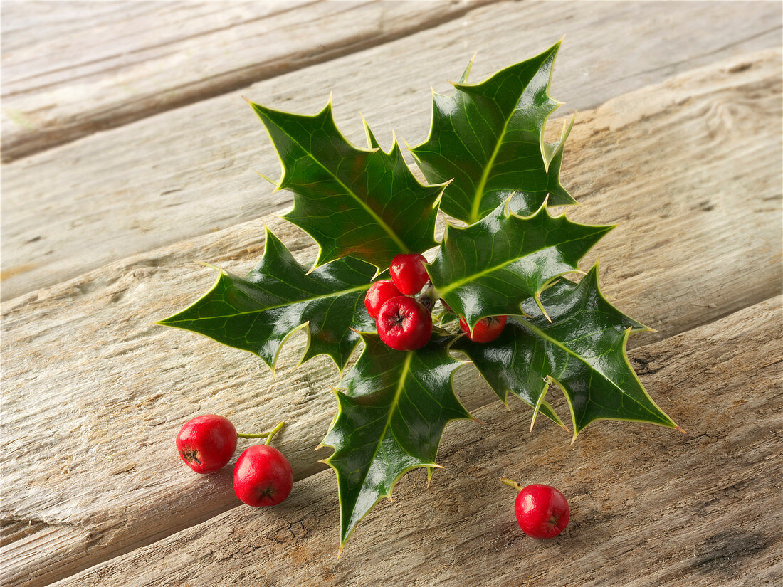 Fresh holly leaves with red berries on a wooden surface