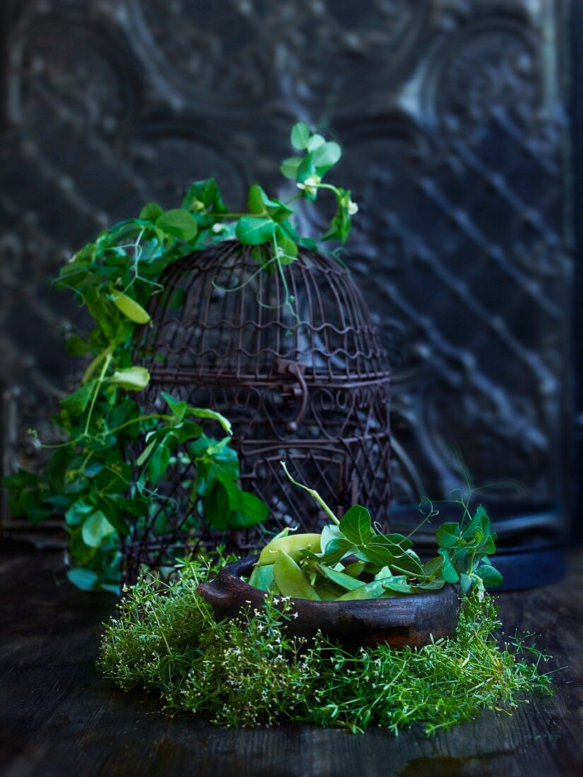 Sugar snap peas and fresh herbs