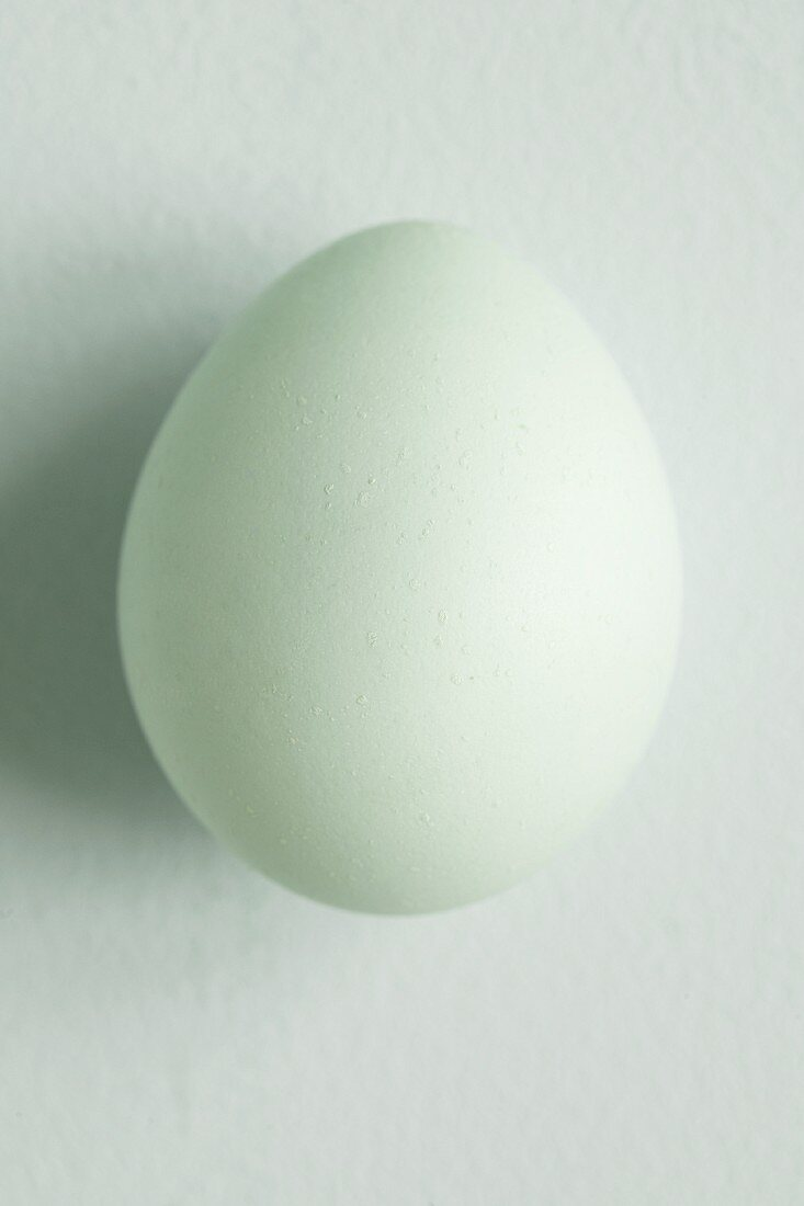An egg with a pale green shell