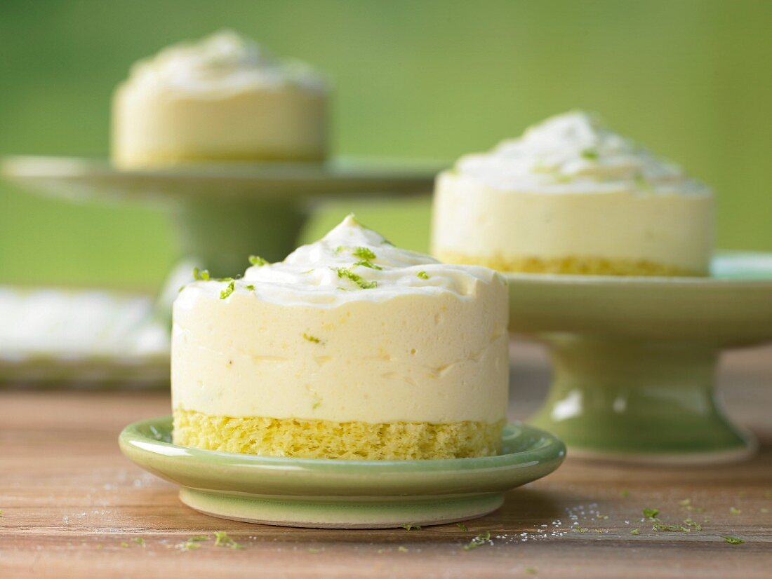 Cream cheese cake with a coconut biscuit base