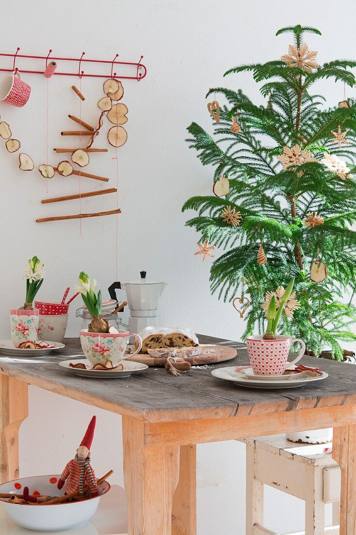 Christmas table decorated with hyacinths in vintage cups, stollen fruit cake, espresso pot, small Christmas tree with straw stars and garlands of dried apple slices against wall