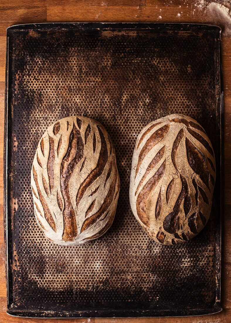 Two loaves of bread made with roasted kamut flakes and sesame seeds