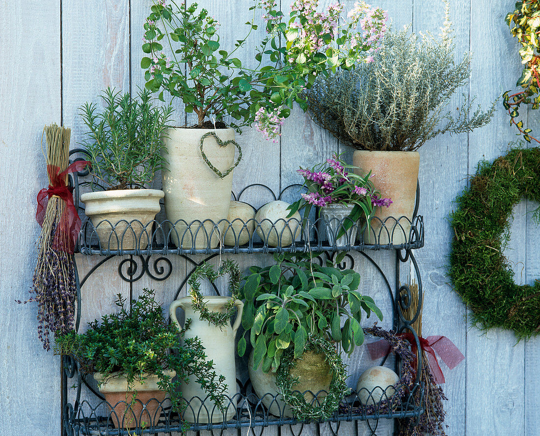 Stainless wire etagere (wire works), rosemary, helichrysum