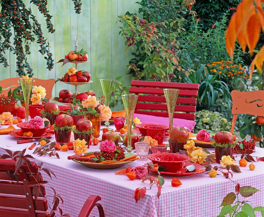 rosenapfeltischdeko  bilder kaufen  12133481 stockfood