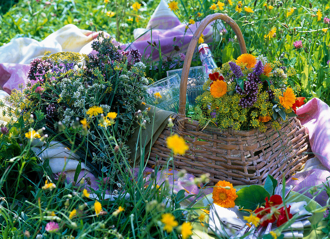 Bouquets of origanum (oregano), foeniculum (fennel), calendula