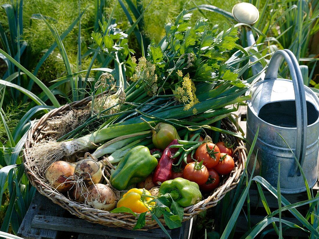 Freshly picked vegetables in a flat wicker basket