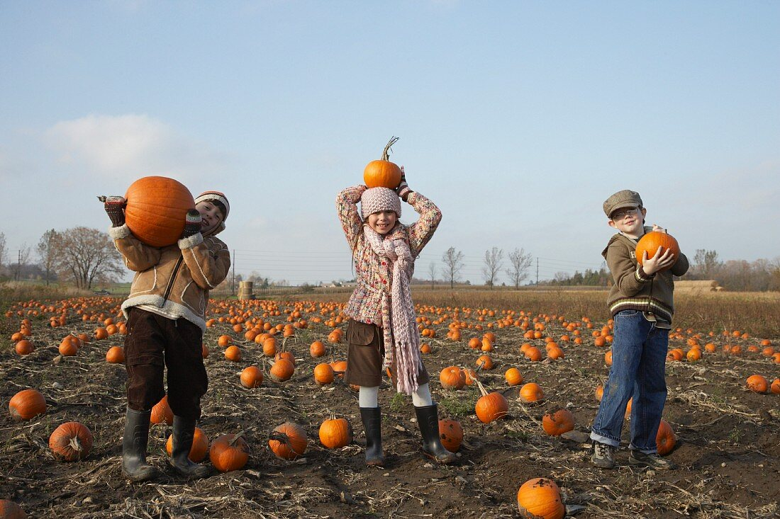 Boys and Girl in Pumpkin Patch