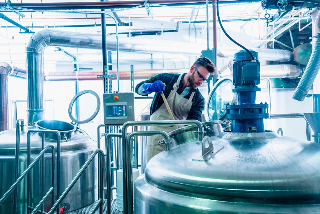 A beer brewing a microbrewery checking the contents of a beer kettle (USA)