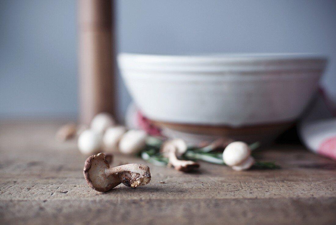 Stillleben mit frischen Pilzen und Keramikschale im Hintergrund