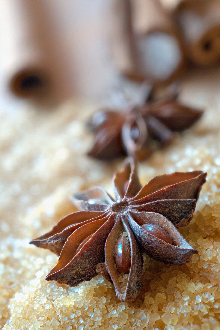 Star anise on cane sugar
