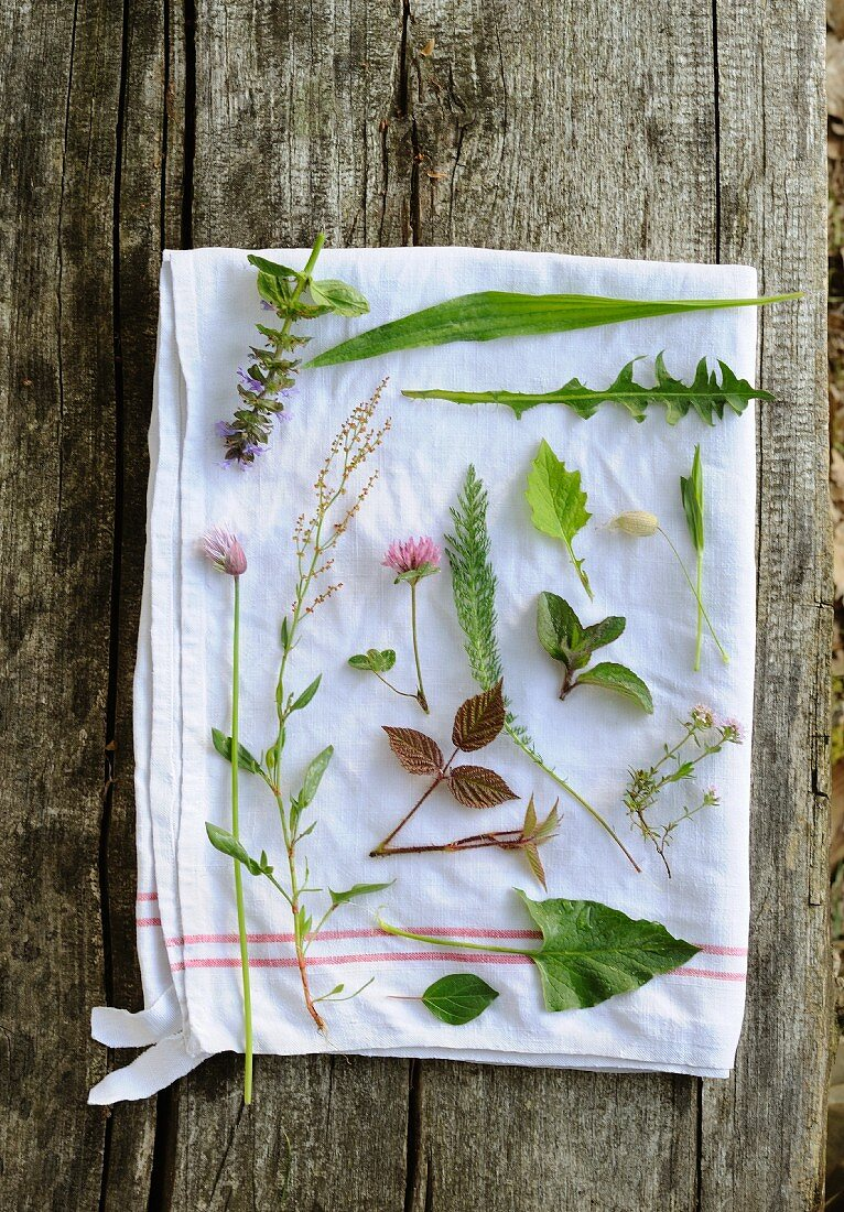 Wild herbs on a white tea towel