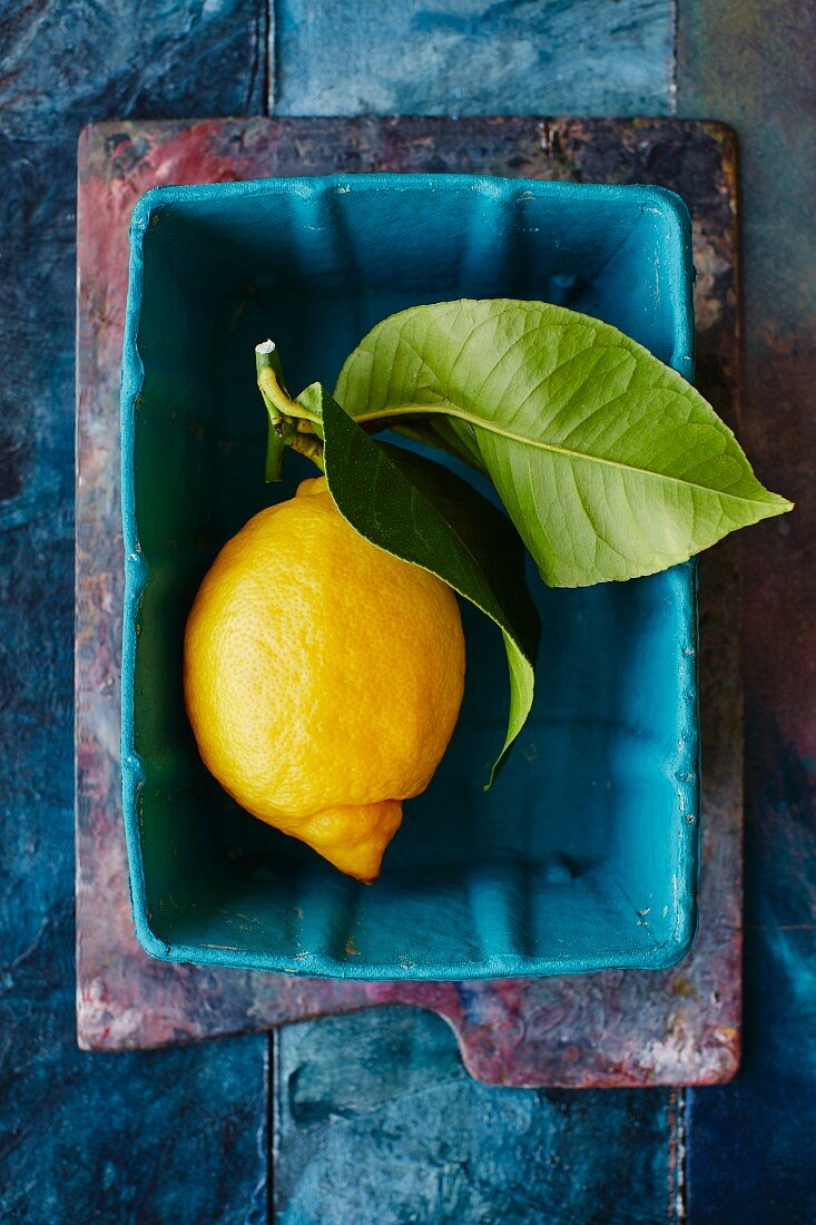 A lemon with a leaf in a turquoise container