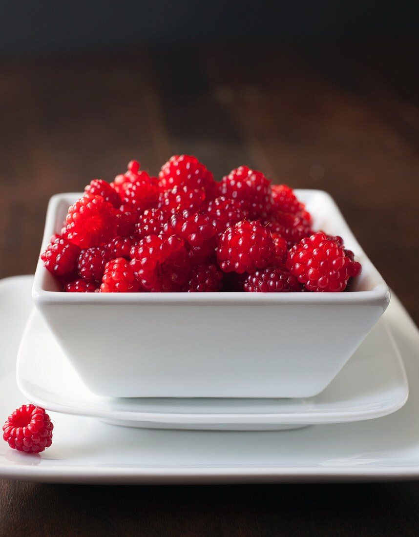 Wild raspberries in a square bowl