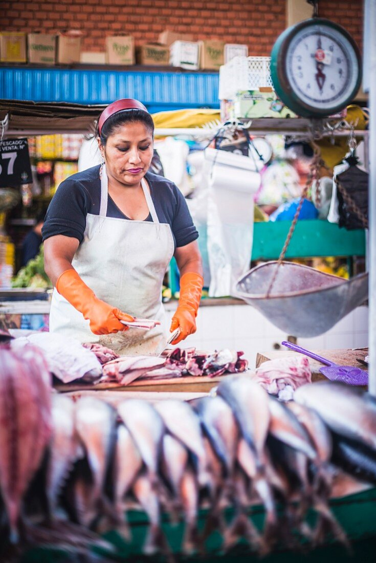 A fish stand at the San Camilo Market (Mercado San Camilo), Arequipa, Peru, South America