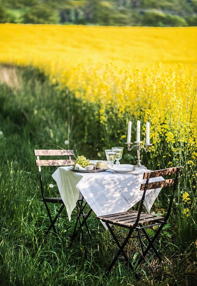 A romantic candlelight dinner by a field of flowering oilseed rape