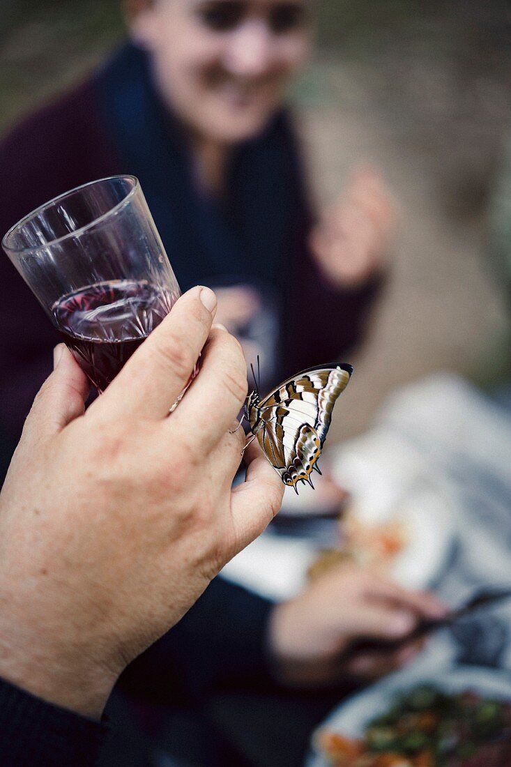 A butterfly on a hand holding a glass of red wine