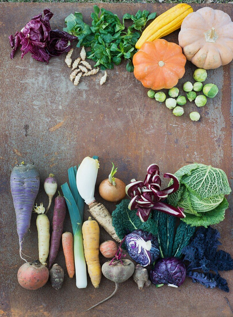 Assorted winter vegetables on a sheet of metal (seen from above)