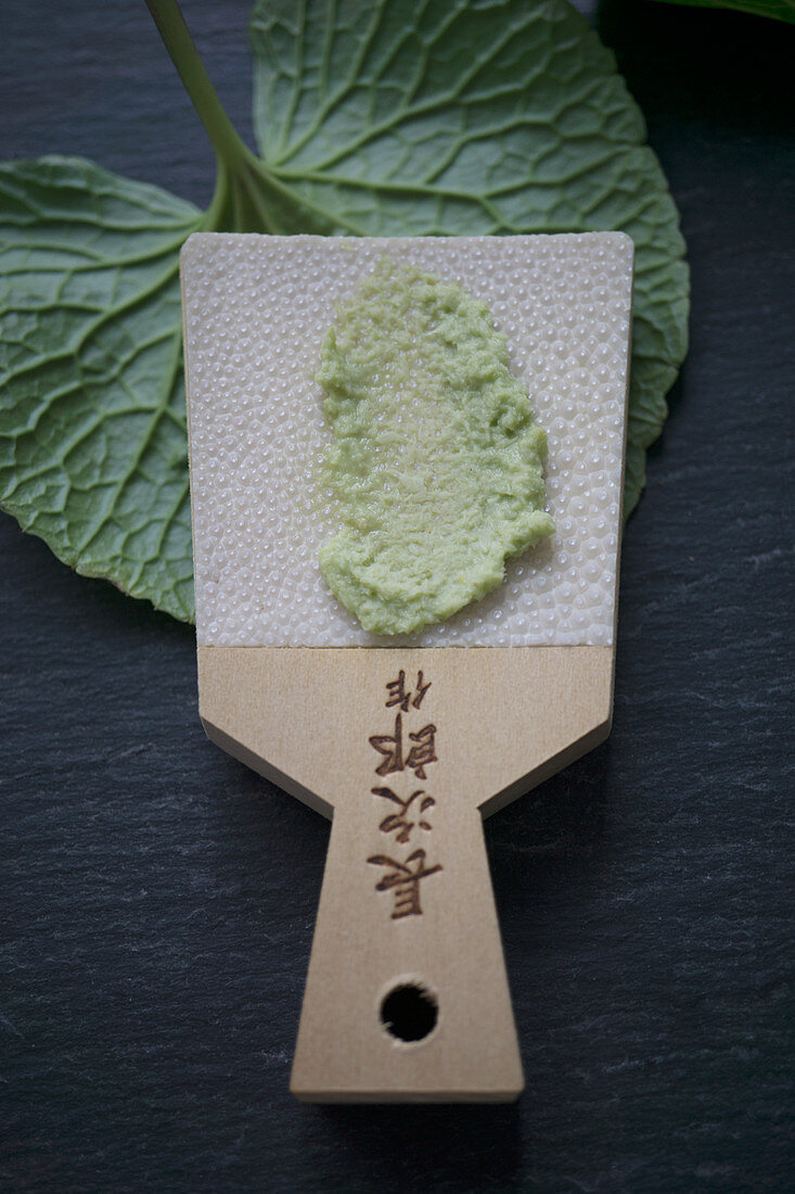 Grated wasabi on a wasabi grater made from shark skin