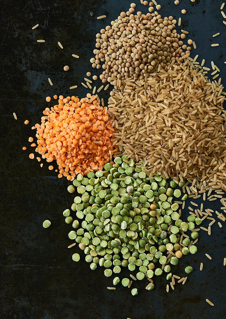 Lentils and grains of rice on a black background (ingredients for dog food)
