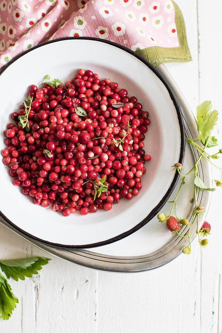 Lingonberries in an enamel dish