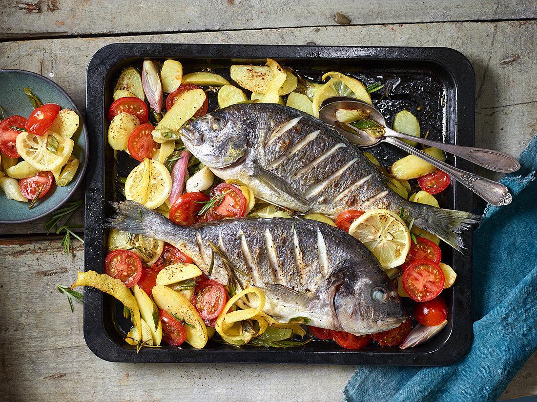 Oven-roasted Mediterranean seabream with lemon potatoes