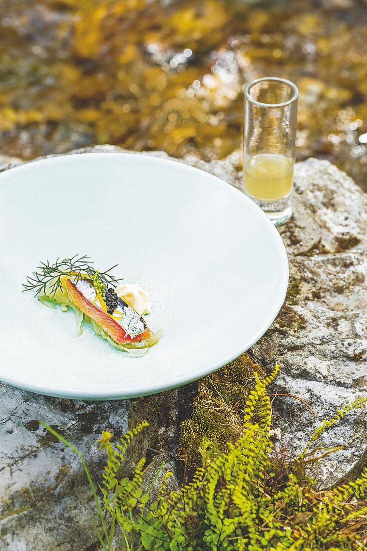 Sardine mit Fenchel, geräucherter Milchcreme und Fenchelbrühe im Glas, Restaurant Hisa Franko, Kobarid, Slowenien