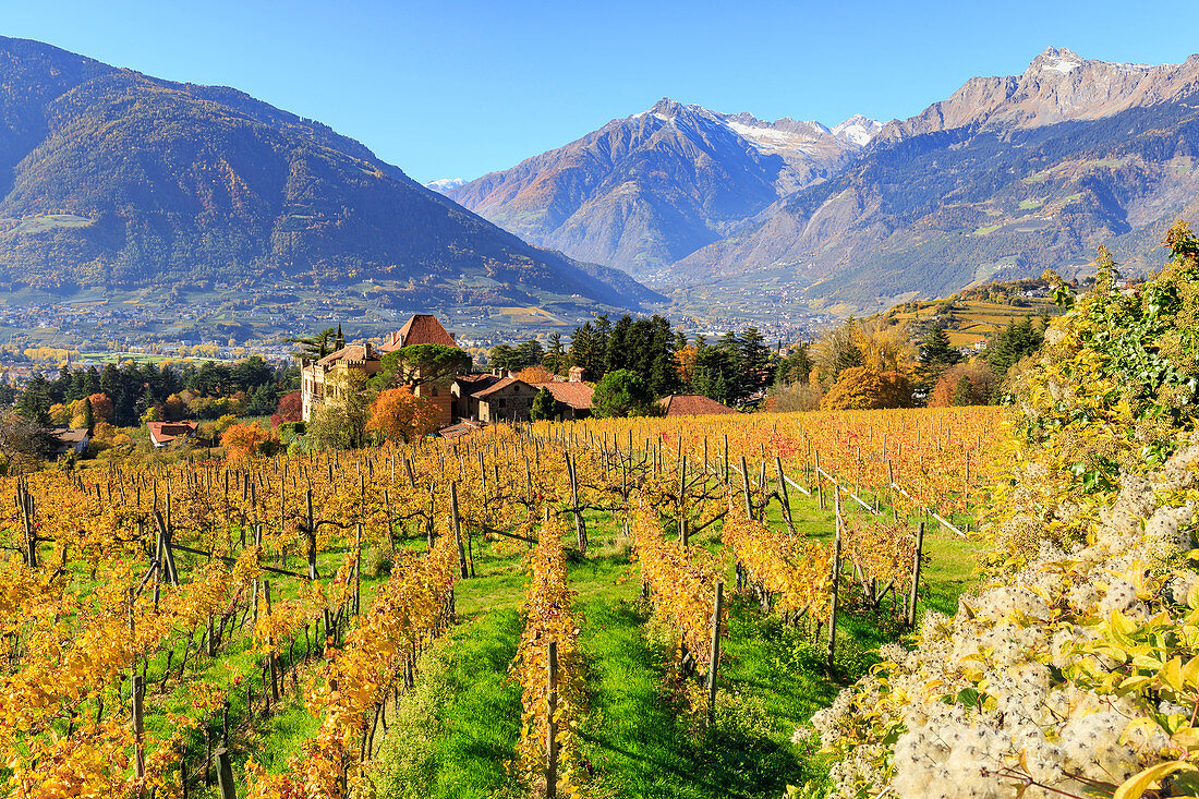 A view of Rametz castle, surrounded by vineyards, Merano, Vinschgau, South Tyrol, Italy