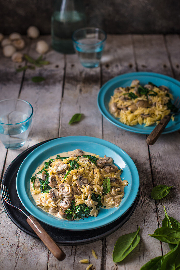 Orzo pasta with creamy garlic mushroom sauce, sage and spinach