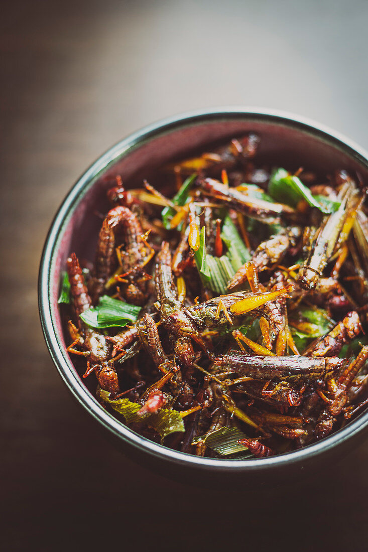 Fried locusts (Thailand)