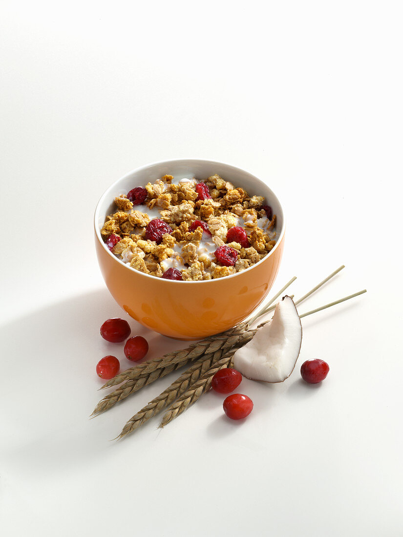 Crunchy muesli with cranberries and coconut in a small bowl