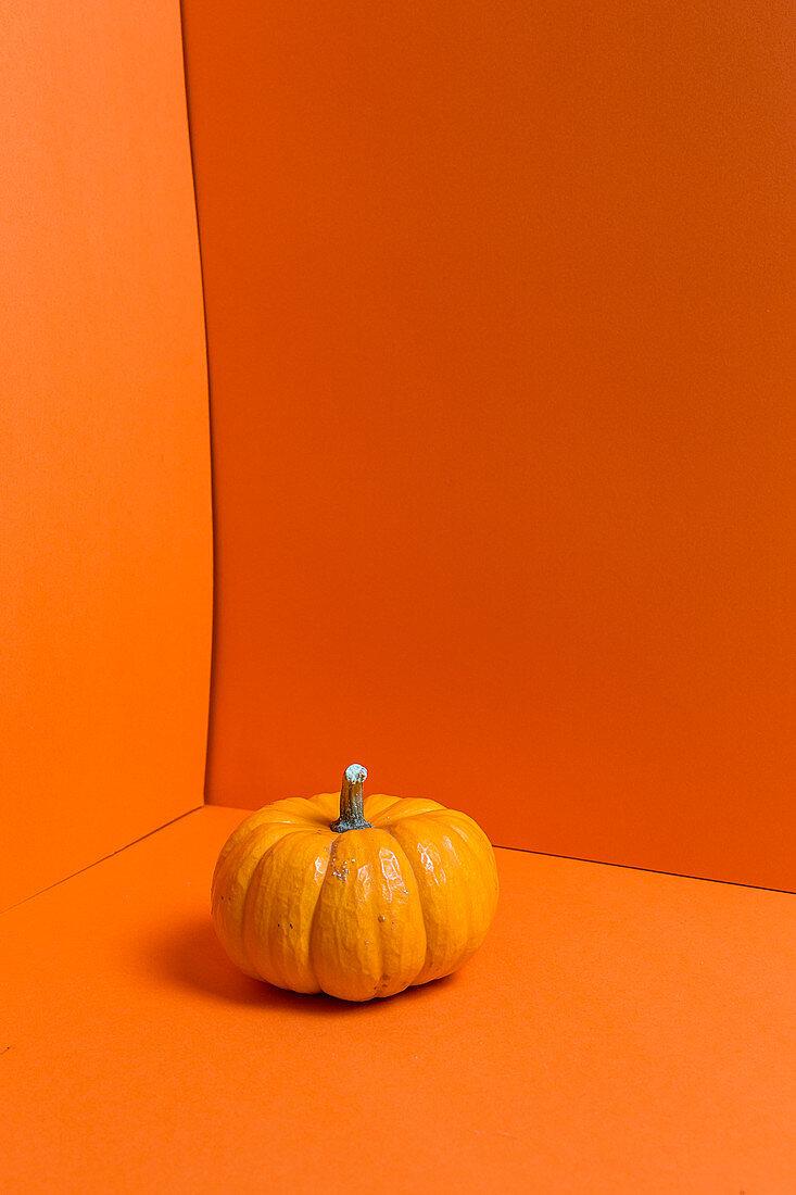 An orange pumpkin on an orange surface