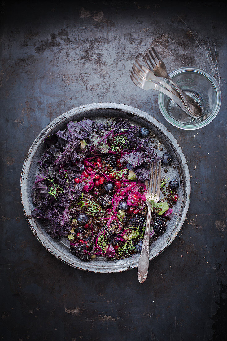 Red cabbage salad with lentils, blackberries, pomegranate seeds and dill
