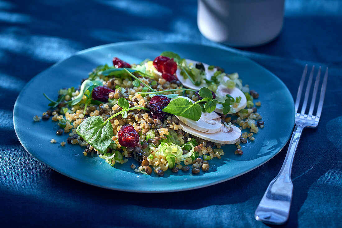 Bulgur salad with cranberries and mushrooms