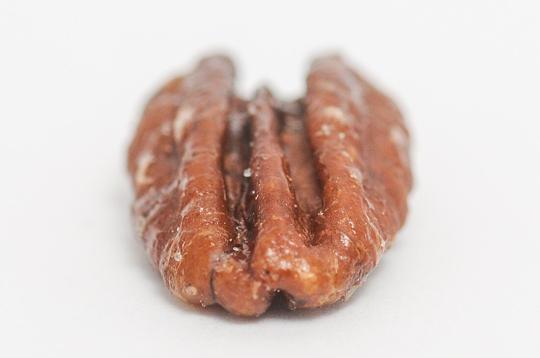 A roasted and salted pecan nut