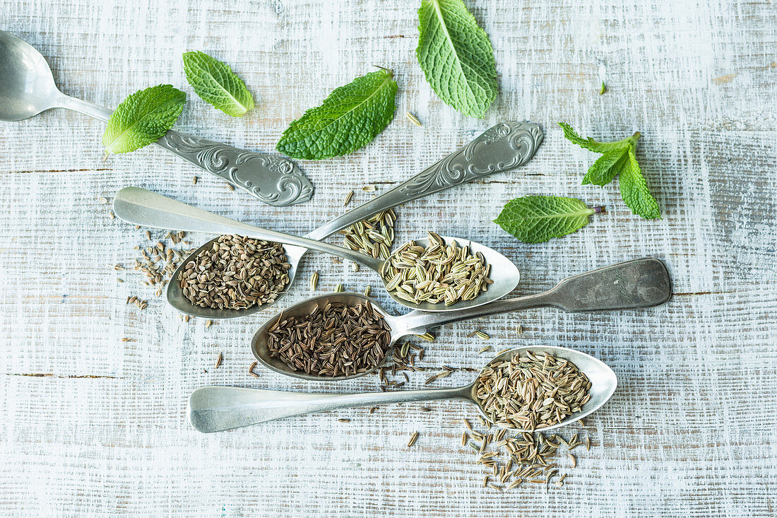 Fennel, anise, caraway, cumin and mint