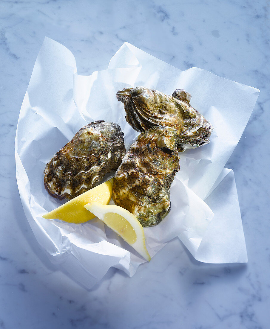 Fresh oysters with lemon wedges on paper