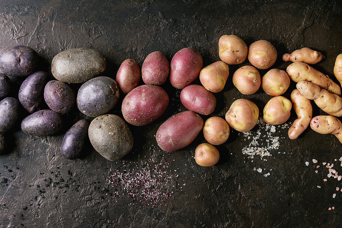 Variety of raw uncooked organic potatoes different kind and colors red, yellow, purple with various of salt