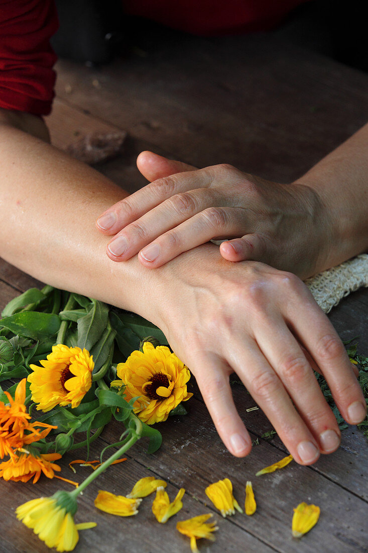 Well-treated female hands with marigolds on a wooden table