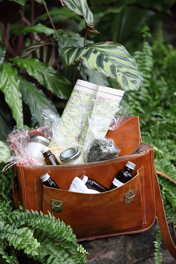 Various household remedies as a first aid kid in a leather bag