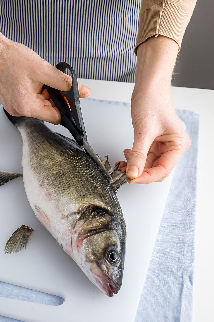 Preparing a sea bass for cooking