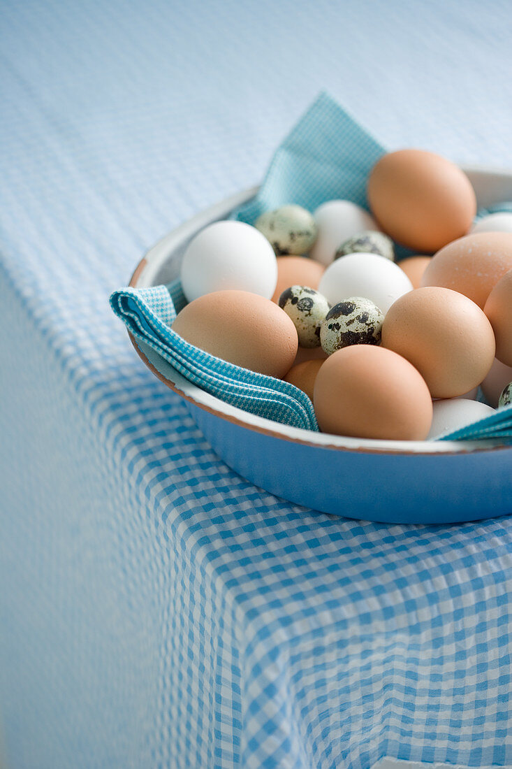 Various eggs in a ceramic bowl