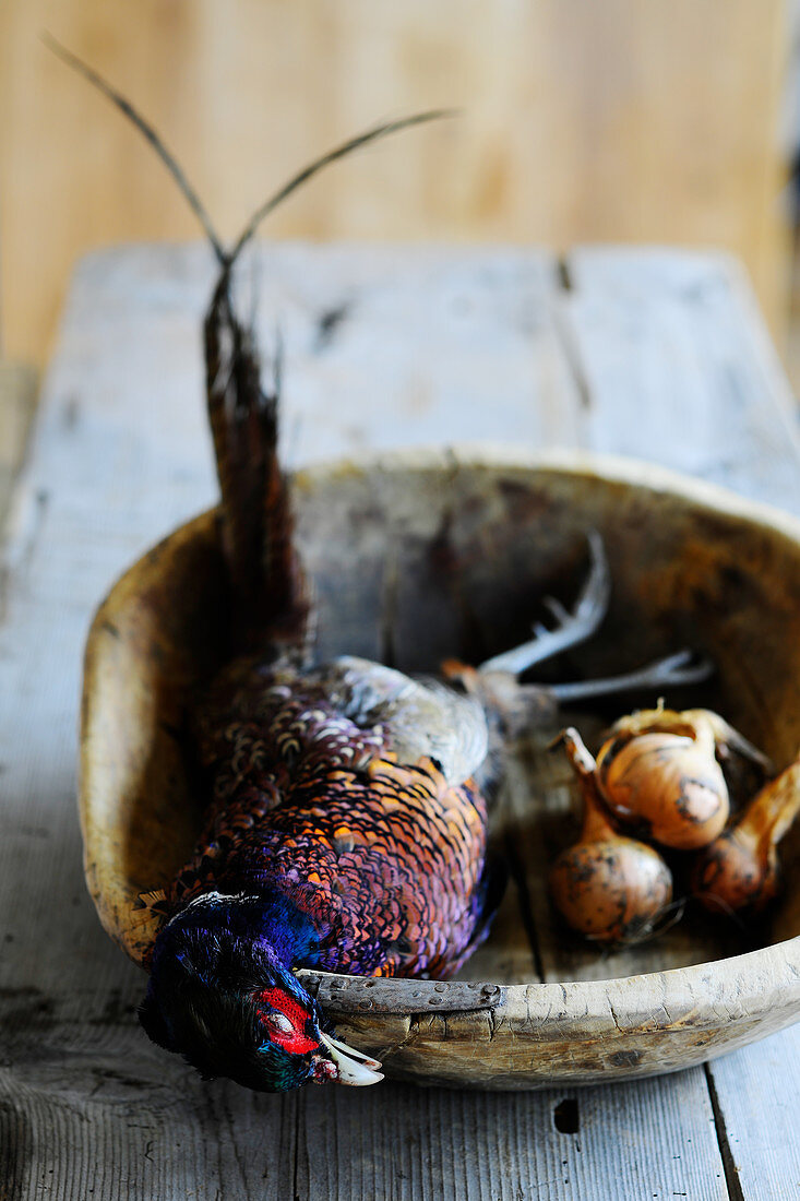 A pheasant in a wooden bowl