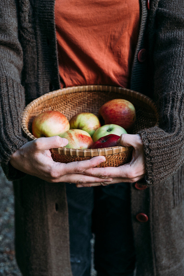 Apples in a basket with hands