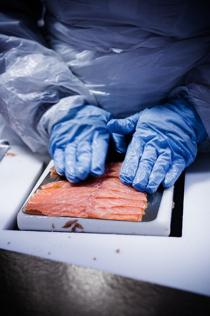 A work packing salmon slices