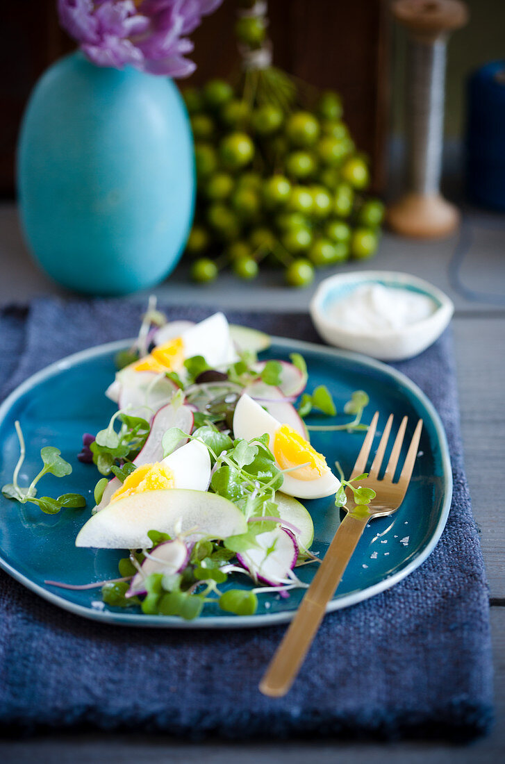 Spring salad with eggs, apples, radishes and micro greens