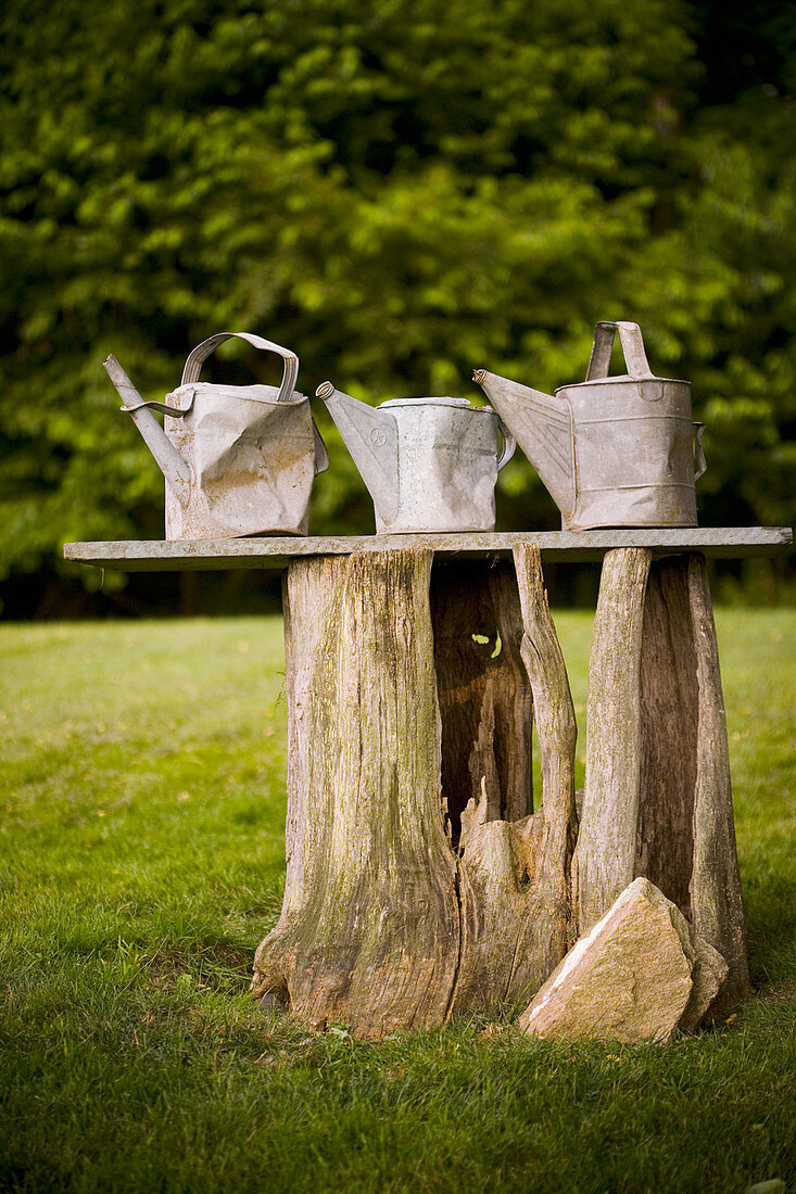 Three battered old watering cans in garden