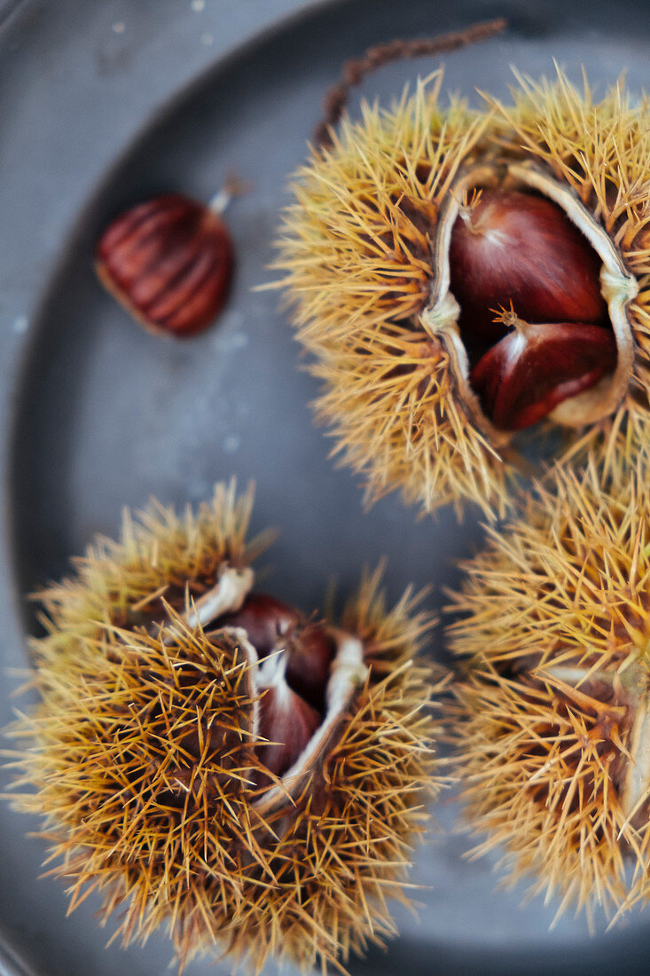 Sweet chestnuts in shells (close up)