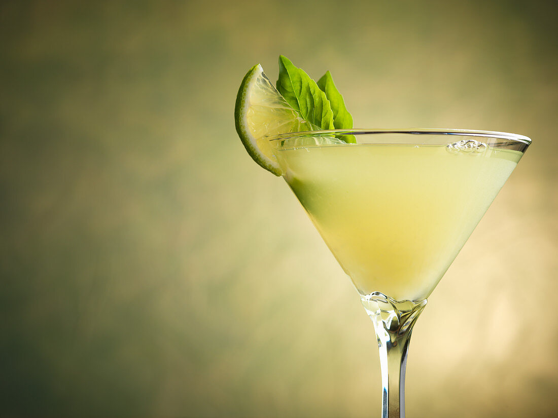 Gin Rickey cocktail with basil and lime