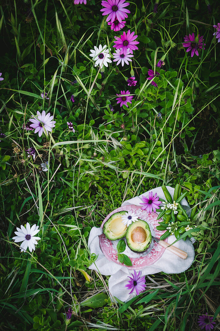 Two avocado slices on a pink and white plate in a filed with grass and pink flowers