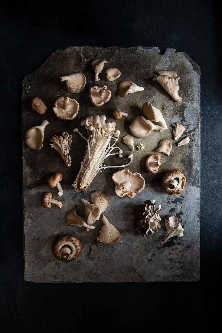 Variety of mushrooms on a rustic slate, view from above